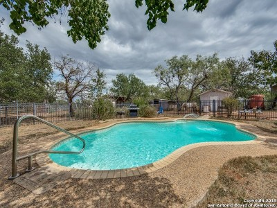 Seguin Single Family Home For Sale: 1787 Jakes Colony Rd