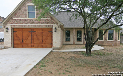 Castroville Single Family Home For Sale: 133 Mulhouse Cir