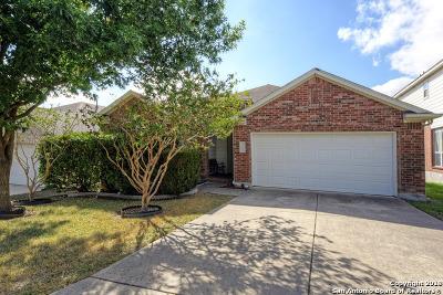 San Antonio Single Family Home For Sale: 2702 Rio Guadalupe