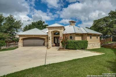 Menger Springs Single Family Home For Sale: 201 Well Springs