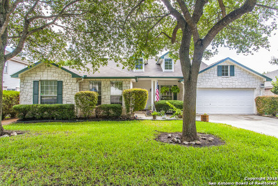 San Antonio Single Family Home For Sale: 3506 Windy Ridge Ct