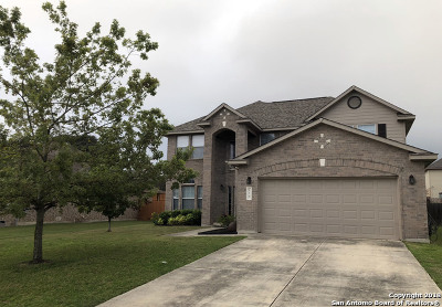 Boerne Single Family Home For Sale: 129 Shadow Knolls
