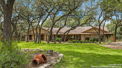 Fair Oaks Ranch Single Family Home For Sale: 29253 Tessara Circle