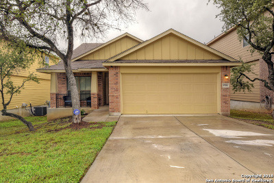 Single Family Home New: 1506 Dancing Wolf