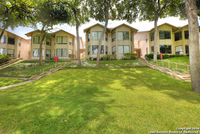 New Braunfels Condo/Townhouse Price Change: 353 S Gilbert Ave #353