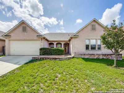 Cibolo Single Family Home New: 161 Springtree Hollow