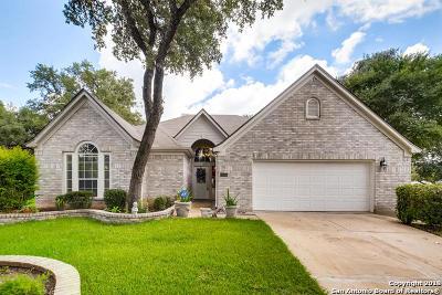 Single Family Home New: 11503 Fair Cove