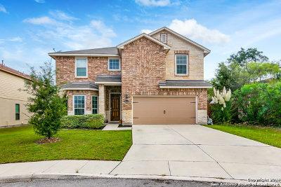 Boerne Single Family Home For Sale: 8703 Elkhorn Knoll