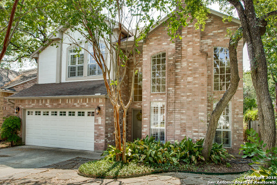 San Antonio Single Family Home New: 2118 Mollys Way Dr