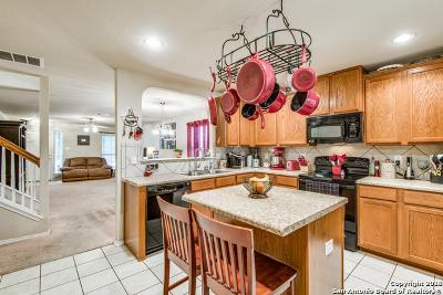 Schertz Single Family Home New: 729 Hollow Ridge