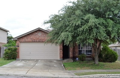 New Braunfels Single Family Home For Sale: 305 Ibis Falls Dr