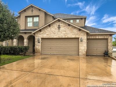 San Antonio Single Family Home For Sale: 23506 Woodlawn Ridge