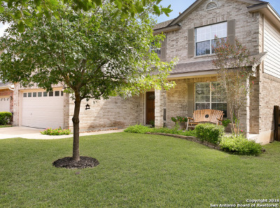 Helotes Single Family Home New: 14020 Auberry Dr