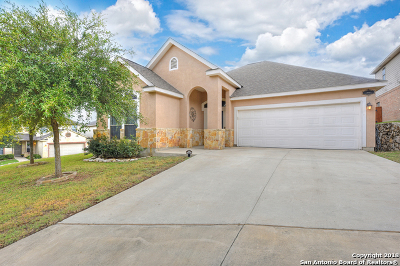 San Antonio Single Family Home New: 24114 Range Water