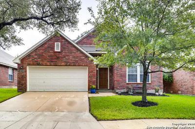San Antonio Single Family Home New: 2722 Cascade Mist