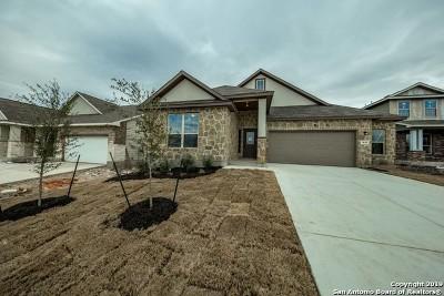 New Braunfels Single Family Home New: 3616 Blue Cloud Drive