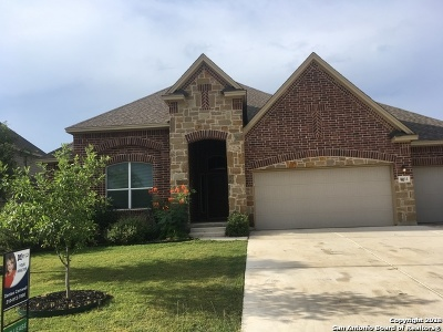 Boerne Single Family Home For Sale: 8011 Mystic Chase
