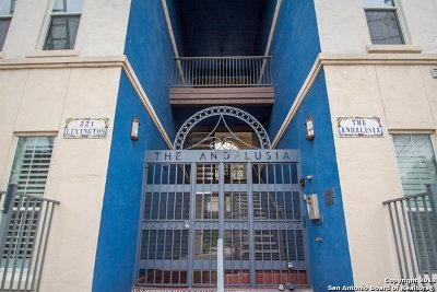 San Antonio Condo/Townhouse New: 221 Lexington Ave #105