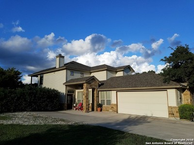 Canyon Lake Single Family Home For Sale: 1113 Paradise Dr