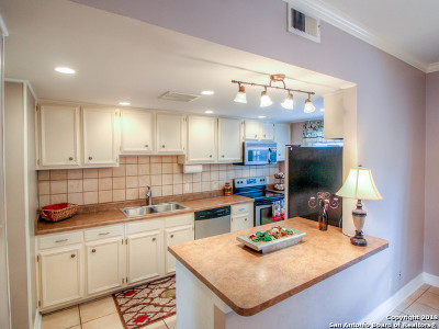 San Antonio Condo/Townhouse New: 3678 Hidden Dr #404