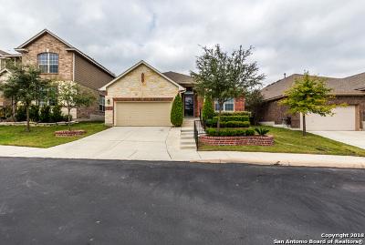 San Antonio Single Family Home New: 2743 Trinity Glade