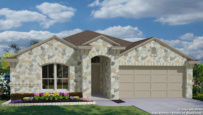 New Braunfels Single Family Home New: 460 Agave Flats