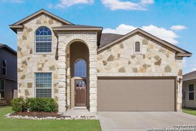 New Braunfels Single Family Home New: 2419 Chad St