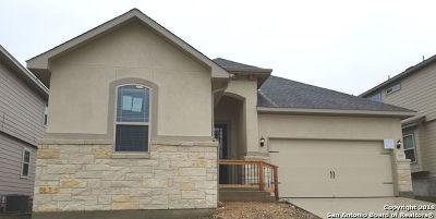 New Braunfels Single Family Home New: 2927 Nicholas Cove