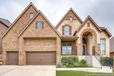 San Antonio Single Family Home New: 8719 Ledge Run