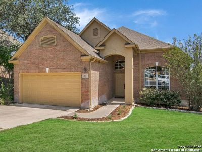 San Antonio Single Family Home New: 167 Da Vinci