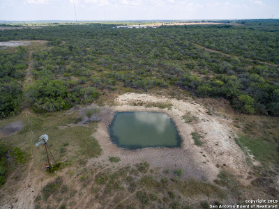 Atascosa County Farm & Ranch For Sale: Hwy 281 South -- 221+- Acres