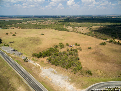 Atascosa County Farm & Ranch For Sale: Hwy 281, Leal Road & Ih 37 Frontages -- 203 +- Acres