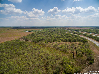 Atascosa County Farm & Ranch For Sale: Tbd Leal Road & Riggins Rock Pkwy--23+- Acres
