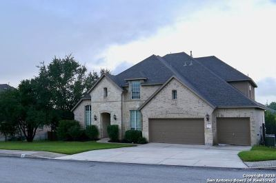 Bexar County Single Family Home New: 47 Gazelle Field