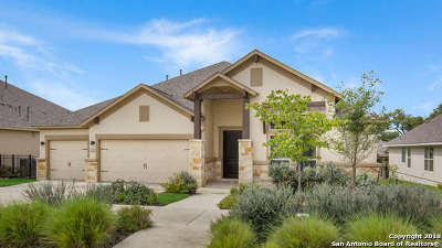 Boerne Single Family Home New: 135 Escalera Circle