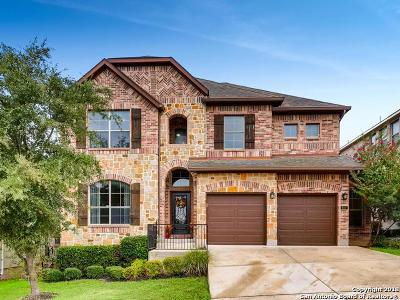 San Antonio Single Family Home New: 611 Olivia Dale