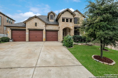 San Antonio Single Family Home New: 26007 Avellino Bluff