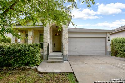 New Braunfels Single Family Home New: 497 San Jacinto Dr
