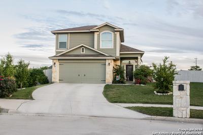 New Braunfels Single Family Home New: 989 Lauren St