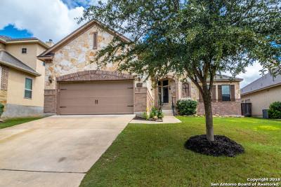 San Antonio Single Family Home New: 25026 Kiowa Creek