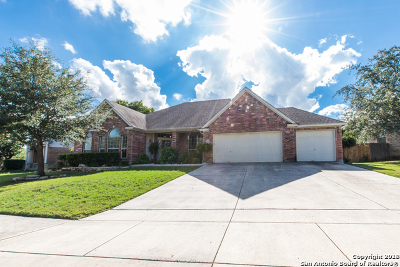 San Antonio Single Family Home New: 1747 Lookout Forest