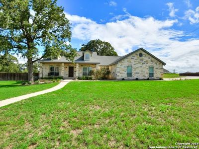 Wilson County Single Family Home New: 100 Abrego Xing