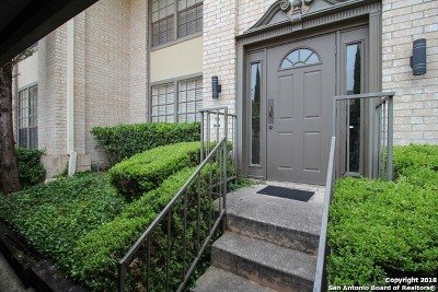 San Antonio Condo/Townhouse New: 165 W Rampart Dr #802
