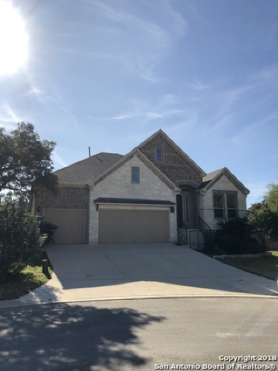 Boerne Single Family Home New: 9014 Leslies Gate