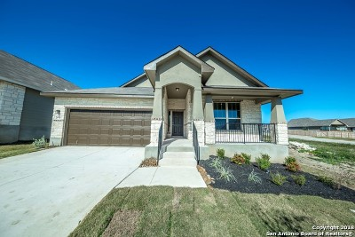 New Braunfels Single Family Home New: 2978 Daisy Meadow