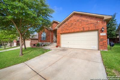 San Antonio Single Family Home New: 3623 Pinyon Pine