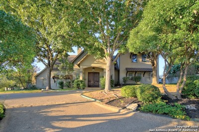 Kerrville Single Family Home For Sale: 317 Overlook Dr.