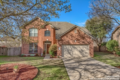 Schertz Single Family Home New: 4657 Red Rock Pass