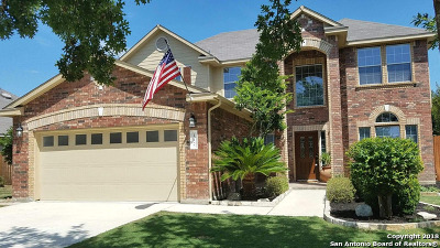 Boerne Single Family Home New: 117 Katie Ct W