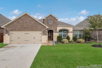 San Antonio Single Family Home New: 25602 Vista Bella